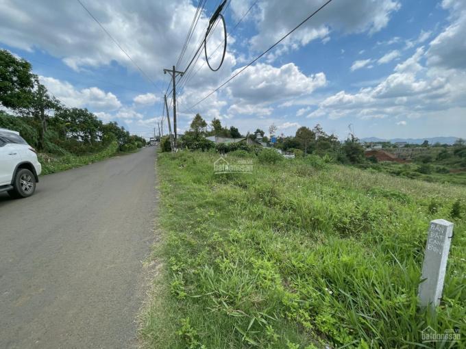 Chính chủ bán miếng đất hẻm thẳng 335 Phan Đình Phùng 11x50m, giá 2.8 tỷ ảnh 0