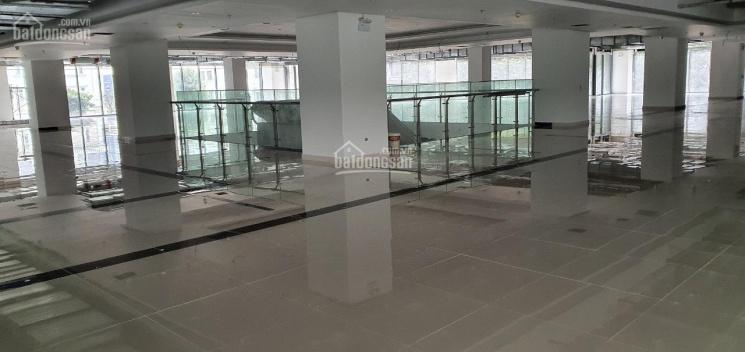 Cho thuê sàn thương mại DT 300m2, 800m2, 1.000m2, 2.700m2 tại tòa nhà Stellar Garden, Thanh Xuân ảnh 0