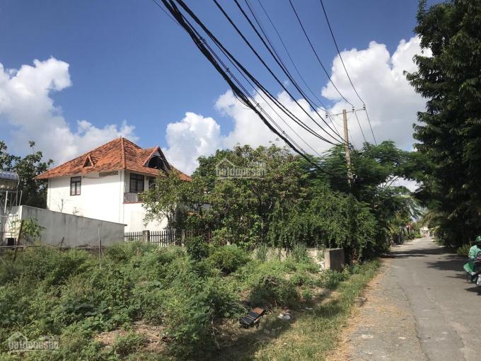 Bán biệt thự vườn nghỉ dưỡng xã Nhị Bình, huyện Hóc Môn, tổng diện tích 471m2, giá 19.5 tỷ ảnh 0