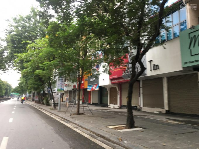Nhà mặt phố Đại Yên, DT 30m2, MT 5m, giá 5 tỷ ảnh 0