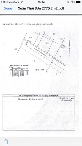 Bán 2770m2 (1051m2 TC) đất đường Xuân Thới Sơn 11A, xã XTS Hóc Môn, 42 - 66 (nở hậu) giá 33 tỷ ảnh 0