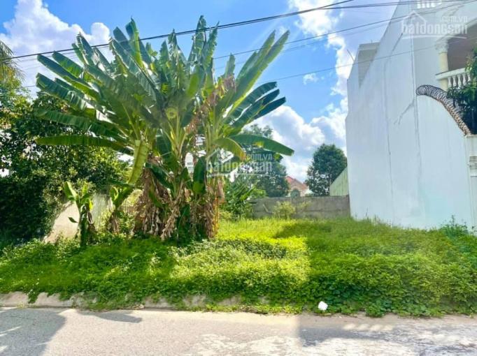 Nền biệt thự 300.3m2 khu Miền Nam, Hưng Phú, Cái Răng sổ hồng, đối diện công viên ảnh 0