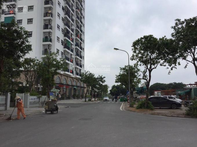 Chính chủ cần bán đất thổ cư tại Phường Phúc lợi-Quận Long Biên-TP Hà Nội. ảnh 0