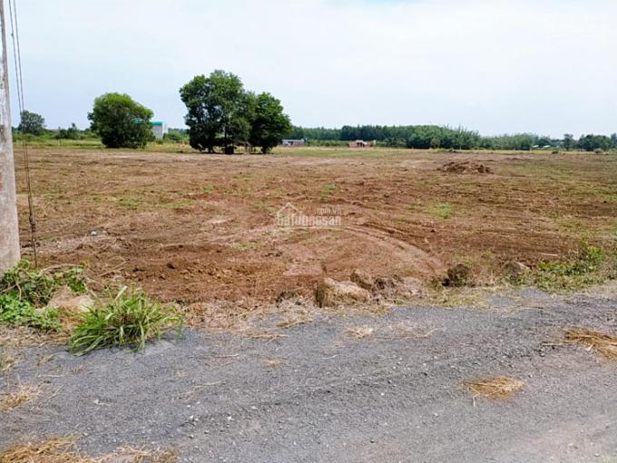 Bán đất sào F0 gần khu công nghiệp Đất Đỏ, sát bên đường Phạm Hùng nối dài giá 1 tỷ 1 /sào ảnh 0