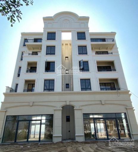 Rổ hàng shophouse zone 6 Swan Bay - giá chủ đầu tư - TT 30% ký HĐMB - giá chỉ 32tr/m2 ảnh 0
