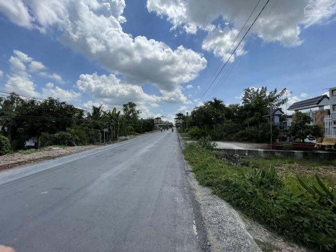 Bán 12.000m2 đất nông nghiệp xã Mỹ An Hưng B, Huyện Lấp Vò, tỉnh Đồng Tháp ảnh 0