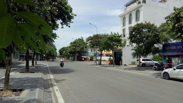 Bán đất mặt phố Việt Hưng, vỉa hè kinh doanh đỉnh 331m2, giá 48 tỷ ảnh 0