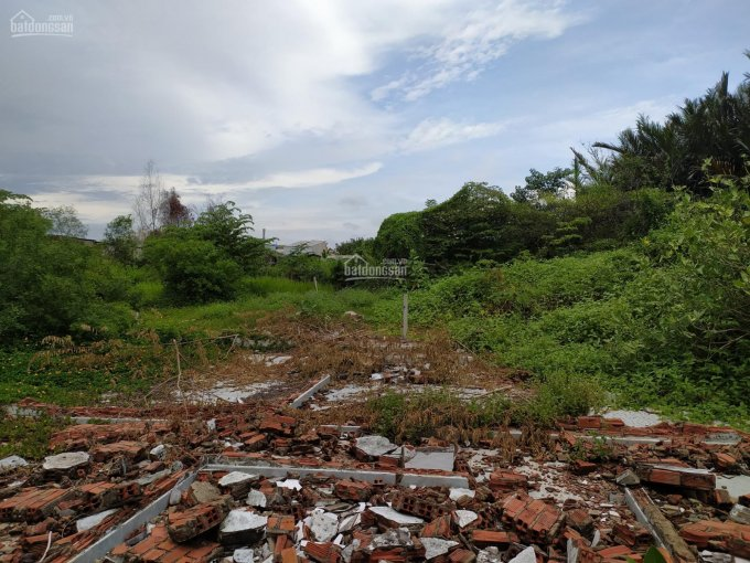 Bán đất chính chủ 100% đường Chuyên Dùng 9, phường Phú Mỹ, quận 7, giá thỏa thuận ảnh 0
