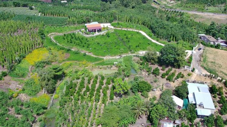 Ngọn đồi view cực đẹp đầy thơ mộng đầy hoa trên cỏ xanh 16000 m2 xã Suối Rao, H. Châu Đức, BRVT ảnh 0