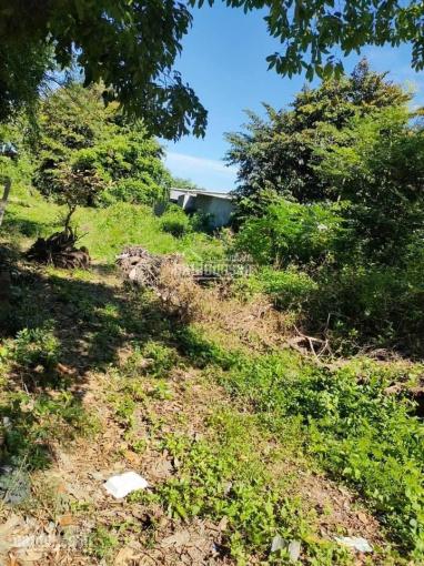 Chính chủ cần bán 10m đất thổ cư đất ở đô thị khu vực thị trấn Óc Eo, Thoại Sơn, An Giang ảnh 0