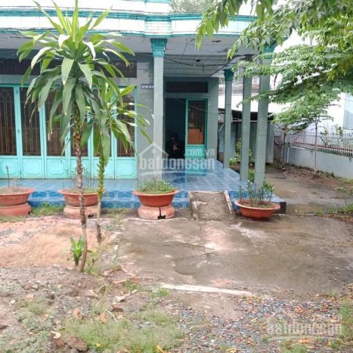 Bán nhà đất trên Quốc lộ 80, xã Bình Thành, Lấp Vò, Đồng Tháp ảnh 0