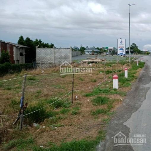 Bán đất trên quốc lộ N2B xã Định An, Lấp Vò, Đồng Tháp ảnh 0