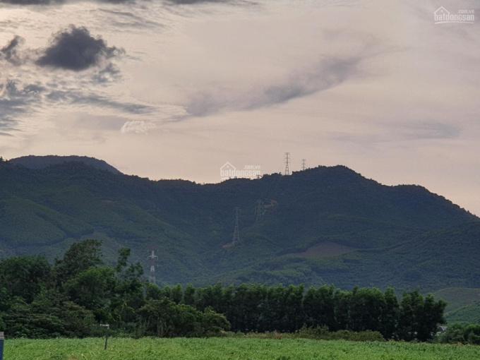 Bán 10ha đất rừng nông trường Việt Trung, có khe, có 5ha keo, xe bán tải đi vào tận nơi ảnh 0