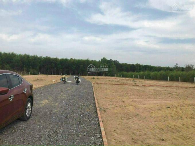 Chính chủ gửi bán lô đất Phước An, cách đường lớn Hùng Vương khoảng 300m giá cực rẻ, LH 0362966460 ảnh 0