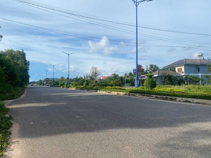 Bán nhanh lô đất 9832m2 mt đường Nguyễn Trung Trực nối dài (đường nhựa 2 chiều), giá tốt ảnh 0