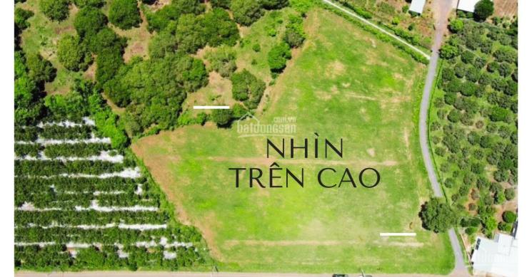 Đất nền thổ cư, sổ riêng khu vực Bà Rịa Vũng Tàu ảnh 0