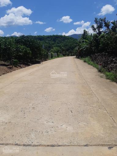 Siêu phẩm farm sinh thái đắc địa tại Thủ phủ nông sản Khánh Sơn (Đà Lạt thứ 2) có sẵn cây ăn quả ảnh 0