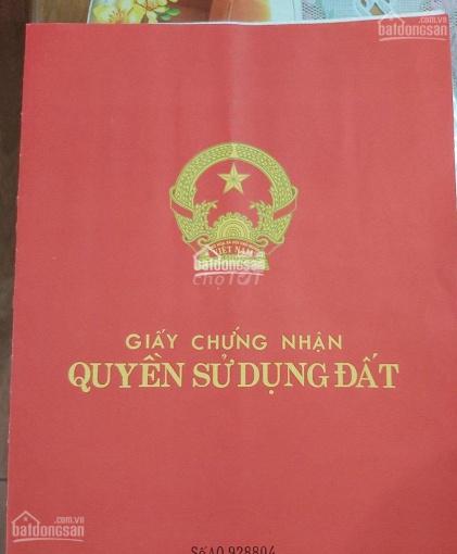 Bán đất Tả Thanh Oai, Thượng Phúc 31m2, sổ đỏ chính chủ 890 triệu, LH: 0374542013 ảnh 0