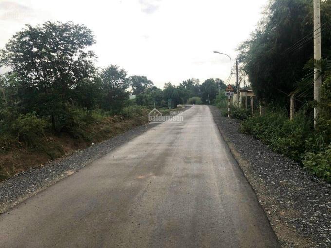 Bán đất 2MT Phú Hoà Đông đường nhựa ảnh 0