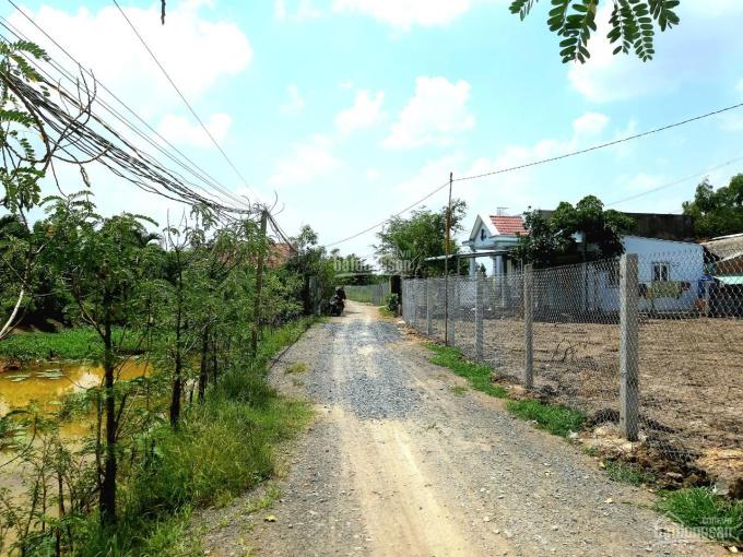 Bán gấp 994m2 đất lúa đường Long Phú, xã Tân Kim, HXH 4m, SHR, giá chỉ 2,45 tỷ. LH 0938 833 252 ảnh 0