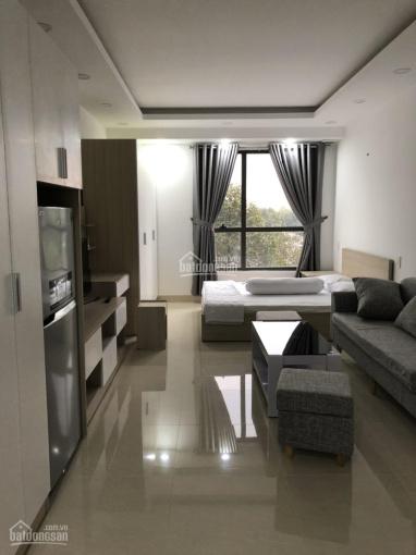 Căn hộ mini view trực diện công viên Gia Định, 35m2 1PN, nội thất cao cấp, giá tốt, CC Garden Gate ảnh 0