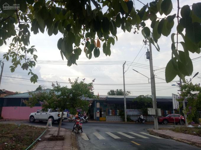 Bán đất chính chủ ĐT753 Tân Phước Đồng Phú TP Đồng Xoài ảnh 0