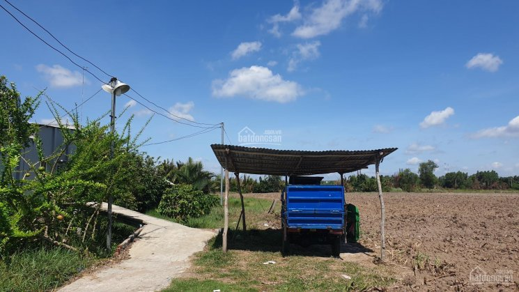 Tôi bán lô đất thổ vườn (CLN) Phước Khánh, Nhơn Trạch đường ô tô, mặt rạch, có dân cư 1000m2/1,2 tỷ ảnh 0