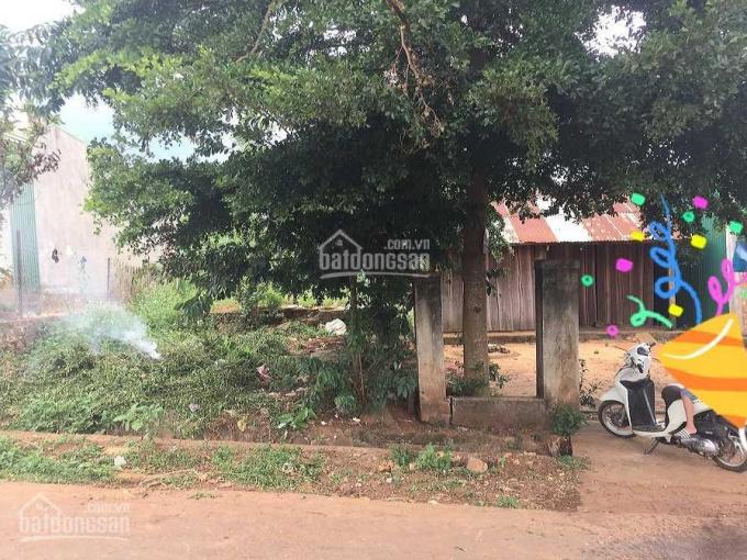 Đất thổ cư ngang 15m, xã Đắk Lao, H. Đắk Mil, 471m2, đường nhựa xe hơi ảnh 0