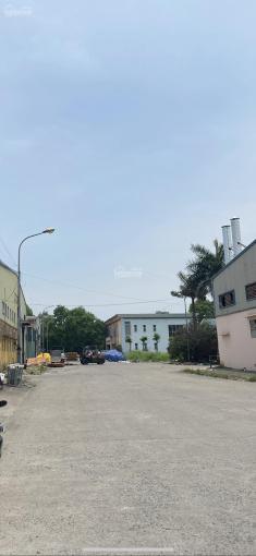 Bán đất 3.800m2 khu công nghiệp Ngọc Hồi, Thanh Trì, Hà Nội ảnh 0