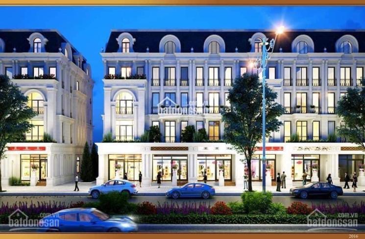 Bán biệt thự siêu đẹp - shophouse - 2 căn liền - KĐT Louis Đại Mỗ - 217m2 - 5 tầng - giá: 34 tỷ ảnh 0
