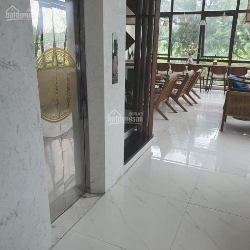 Bán nhà mặt phố Hoàng Cầu, Đống Đa, cafe view hồ, 250m2, mặt tiền 9m, sổ vuông đẹp, giá hơn 60 tỷ ảnh 0