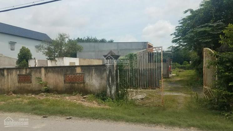 Bán đất lớn MT Bùi Thị Điệt (Vành đai 4), 2369m2, Phạm Văn Cội, Củ Chi. LH 0901199686 ảnh 0