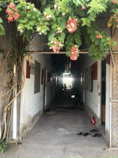 Chính chủ bán đất đã xây 8 phòng trọ cho thuê tại ấp Rừng Dầu - Long An ảnh 0