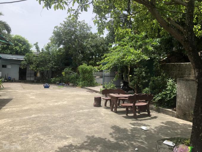 Bán nhà thôn Đông Tống Xá, xã Yên Xá, huyện Ý Yên, Nam Định ảnh 0