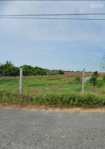 Cần bán đất nền thổ cư 300m² còn lại là CLN. Diện tích 10,05m dài 51m thị trấn Óc Eo, Thoại Sơn ảnh 0