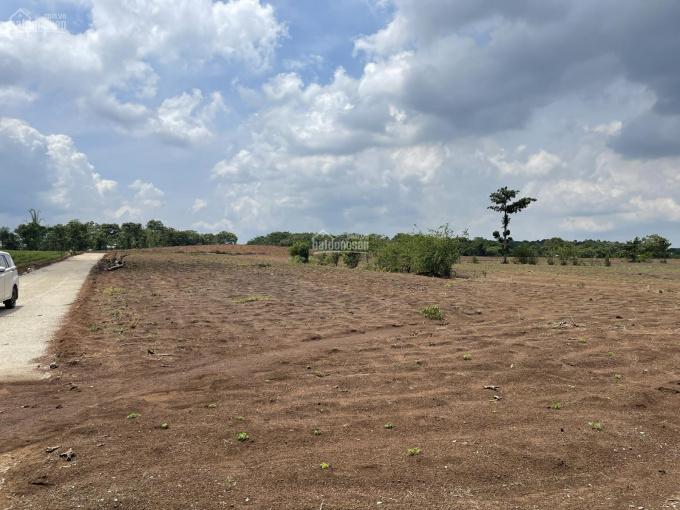 Chính chủ bán sào đất ngang 38m mặt tiền, đất vuông vức thích hợp anh chị đầu tư lâu dài 0962677820 ảnh 0