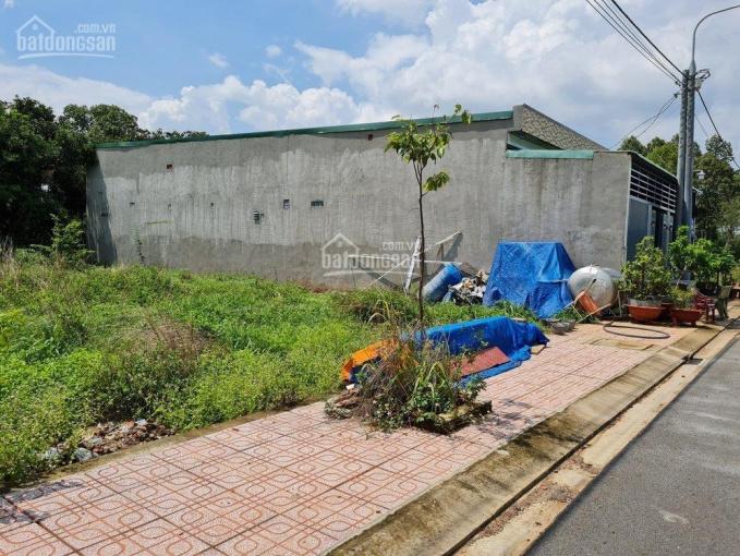 Đất nền xã Lộ 25, 108m2 thổ cư 100%, sổ riêng, ngay trường Nguyễn Viết Xuân, cách DT 769 chỉ 200m ảnh 0