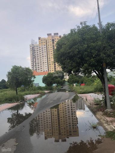 Bán đất nền dự án Cao Đẳng Mẫu Giáo TW3 - Kế bên Verosa Khang Điền, DT 12x18 và 6x22. SHR ảnh 0
