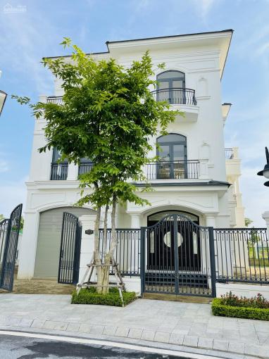 Mở bán dự án Vinhomes Star City Thanh Hoá, căn đơn lập 15 tỷ view công viên ảnh 0