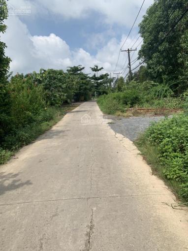 Bán lô đất huyện Bình Chánh - giá tốt cho nhà đầu tư nhanh tay ảnh 0