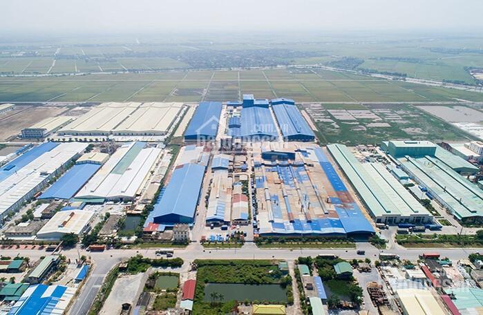 Bán đất nền khu đấu giá Trái Diêm 3 - dự án Tiền Hải Center City chỉ từ 21tr/m2 CK 11,5% ảnh 0