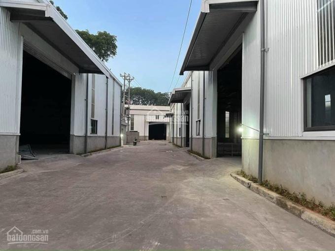 Công ty Thành Đạt cho thuê kho gần cầu Phú Lương (ngay sát TP Hải Dương). DT 900m2 và 2500m2 ảnh 0