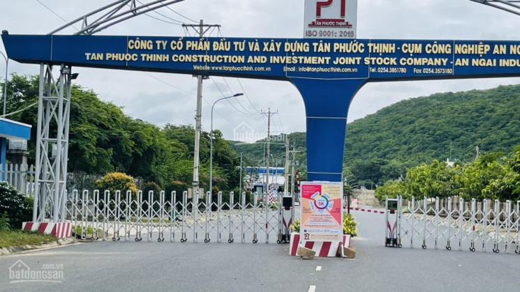 Bán lô đất nền biệt thự siêu đẹp xã An Ngãi, Long Điền, BRVT ảnh 0