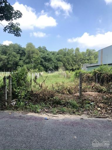 Đất mặt tiền DX 063 Định Hoà, đường nhựa thông, DT 6x28m, TC 60m2 giá 1tỷ980, thích hợp xây nhà ở ảnh 0