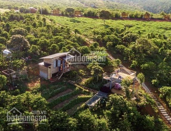 Giá ngộp 1044m2 đất nằm trong khu quy hoạch đất ở phù hợp làm nhà vườn, gần suối nước nóng 1km ảnh 0