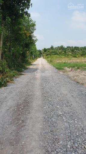 Lô đất Phạm Thái Bường, Phước Khánh, đường ô tô đất CLN giá gốc cắt sổ mặt rạch 1000m2 giá 1,65tr/m ảnh 0
