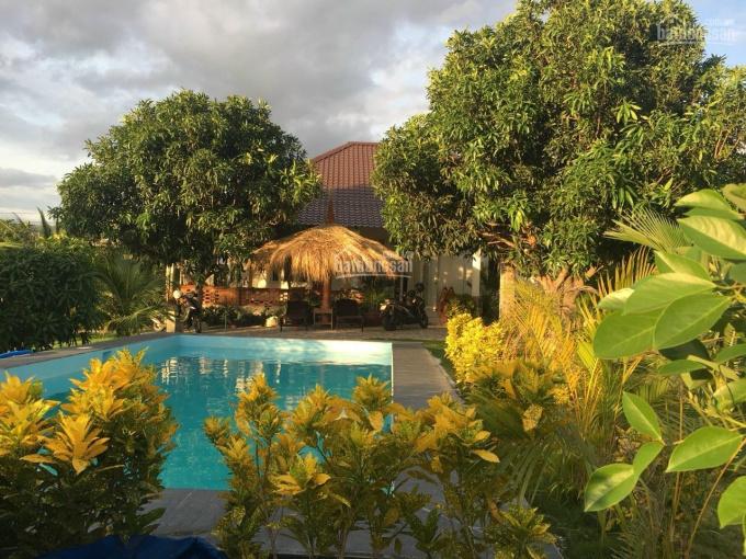 Cần bán lại biệt thự vườn khu Thiện Nghiệp, Bình Thuận hiện tại DT 2700m2 LH: 0949 160 200 ảnh 0