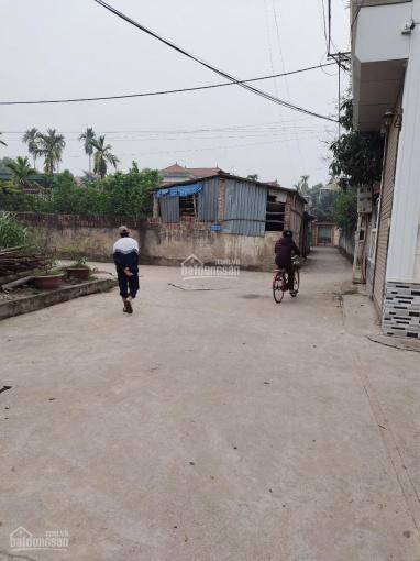 Bán 80m2 nhà đất Đồng Tháp, Đan Phượng, Hà Nội. Gần đường ô tô tránh, giá tốt ảnh 0