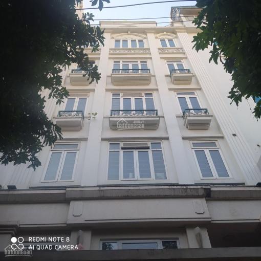 Chính chủ cho thuê nhà ngõ 92 Nguyễn Khánh Toàn, 85m2 * 6T, mặt tiền 10m, giá 45 tr, LH 0363312651 ảnh 0