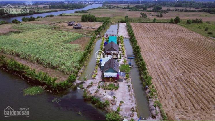 Chính chủ gửi bán đất sào Phước Khánh, giá gốc sổ hồng riêng, đường ô tô, mặt rạch, 1000m2, 870tr ảnh 0